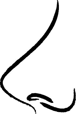 icône nez